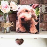 Square Personalised Pet Photo Block